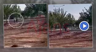 Şanlıurfa'da bir kişinin öldüğü olayın görüntüleri ortaya çıktı